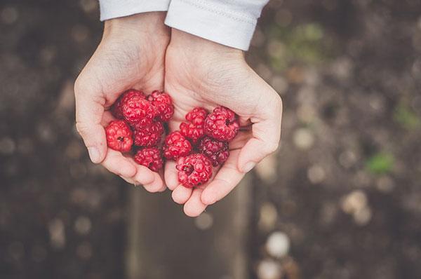 Sharing berries